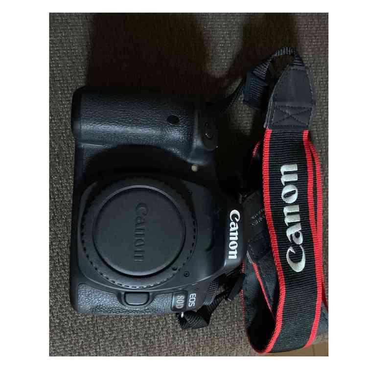 キャノン EOS80Dの商品画像